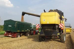 Getreideernte, © getreidekonservieren.de