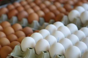 Hühnereier, © getreidekonservieren.de