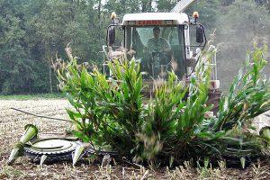 Silomais häckseln, © www.getreidekonservieren.de