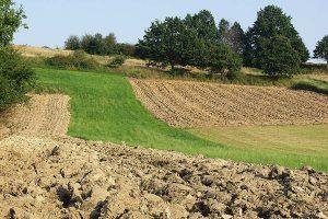 Ackerland, © getreidekonservieren.de
