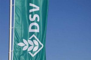 DSV-Fahne, © DSV