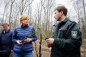 Bundesministerin Julia Klöckner informiert sich über den Zustand des Waldes, © BMEL/Photothek