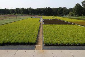 Gartenbaubetrieb, © getreidekonservieren.de