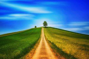 Agrarlandschaft, © DLG