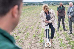 Bei ihrem Besuch im PraxisLabor Digitaler Ackerbau testete Landwirtschaftsministerin Barbara Otte-Kinast einen digitalen Analyse-Spaten, der in Echtzeit wichtige Bodenparameter liefert, © Wolfgang Ehrecke