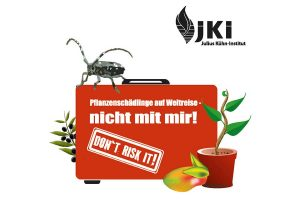 Das JKI warnt, unbestellte Pflanzensamen nicht aussäen, © JKI