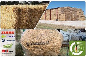 Pressengarne aus Polypropylen gehören neben Silo-, Stretch-, Spargelfolien und Ballennetzen jetzt zu den landwirtschaftlich genutzten Kunststoffprodukten, die von der Initiative ERDE gesammelt werden. © ERDE
