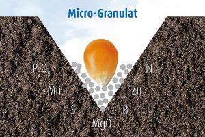 Alle Mikronährstoffe liegen direkt am Saatkorn und können direkt von den Feinwurzeln aufgenommen werden, © agaSAAT