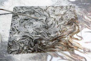 Winzige Glasaale im Transportbehälter mit Temperaturfühler, © Biosphaerium Elbtalaue